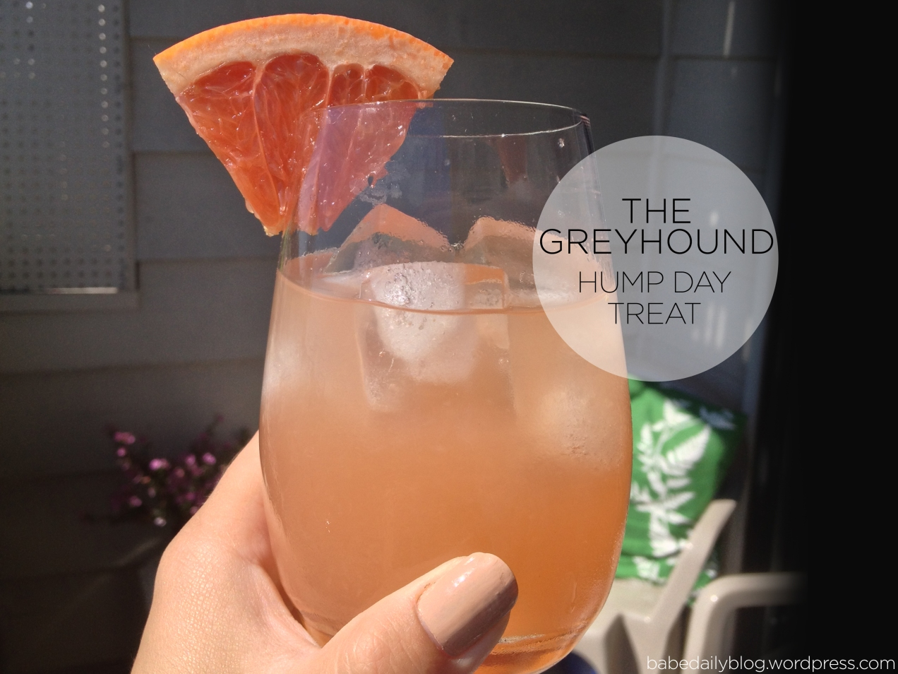 Photo of The Greyhound | Hump Day Treat