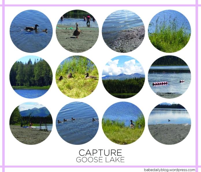 Capture | Goose Lake
